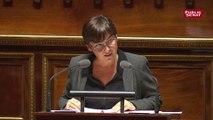 Budget 2019 : le Sénat vote un budget des Outre-mer en hausse