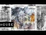 HOUSE: Jonas Rathsman - Lost Youth [Crosstown Rebels]