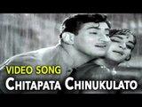 Krishna & Vijaya Nirmala || Chitapata Chinukulato Video Song || Akka Chellelu