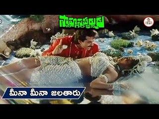 Sahasa Veerudu Sagara Kanya Movie Songs | Meena Meena Video Song | Venkatesh, Shilpa Shetty | Vega