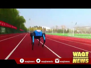 China releases new four-legged robot, capable of running, climbing stairs