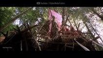 जंगल में हसीन लड़कियां - जंगली हसीनाएं - Hollywood Film in Hindi