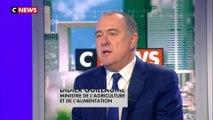 Didier Guillaume : «Je ne crois pas que la FNSEA et les agriculteurs se joignent aux gilets jaunes»