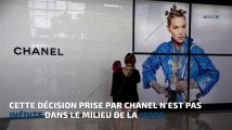 Chanel bannit fourrures et peaux exotiques de ses collections