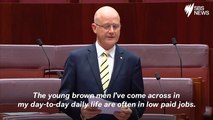 Australian Senator Slammed Over 'Young Brown Men' Speech
