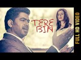 TERE BIN (Full Video) | LALLY K | Latest Punjabi Songs 2017 | Amar Audio