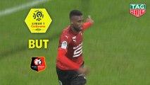 But Jordan SIEBATCHEU (43ème) / Olympique Lyonnais - Stade Rennais FC - (0-2) - (OL-SRFC) / 2018-19