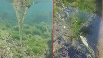 Il filme un tourbillon sous l'eau