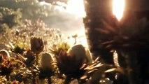 Avengers 4 official trailer in Tamil || avengers ENDGAME #robertdowneyjr #avengers #marvel coser studio