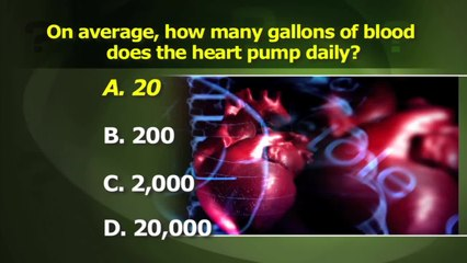How Much Blood Does the Heart Pump?