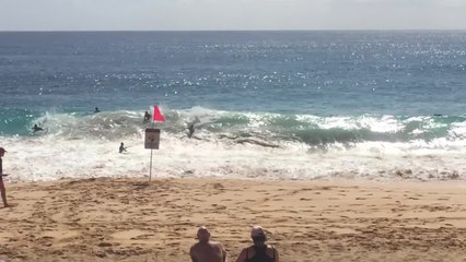 Hawaii: Traumstrand Sandy Beach