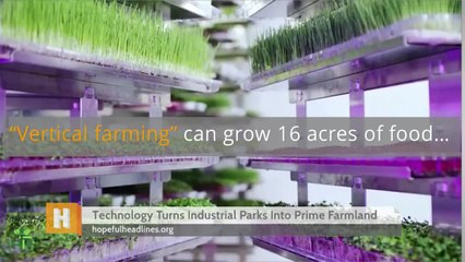 Technology Turns Industrial Parks Into Prime Farmland