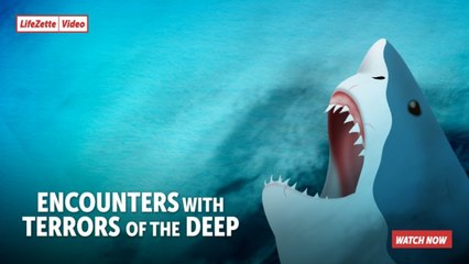 Encounters with Terrors of the Deep