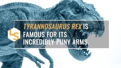 How Did T. Rex Move Its Tiny Arms?