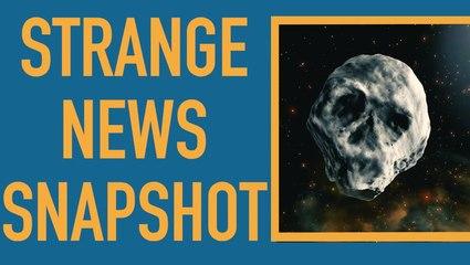 Strange News Snapshot: Week of Sept. 30, 2018