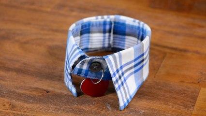Fancy Pet Collar