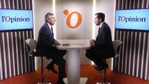 Gilets jaunes: «Il faudrait dissoudre l'Assemblée, mais Emmanuel Macron n'en a pas le courage», affirme Nicolas Bay