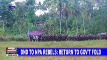 DND to NPA rebels: Return to gov't fold