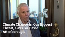 Sir David Attenborough Weights In On Climate Change