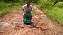 Il libère des centaines de serpents et c'est un peu flippant