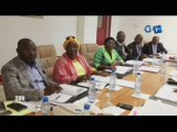 RTG/Reunion de la Commission spéciale chargée de l'examen du projet de loi portant code pénal en République Gabonaise
