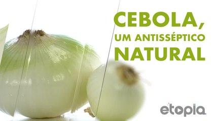 Cebola, antisséptico natural.