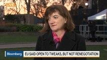 U.K. Conservative Member of Parliament Morgan on Brexit Delay, Backstop Issue
