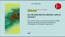 Les microbes dans les aliments, amis ou ennemis ?