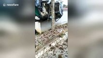 Car crashes off-road and gets wedged between a tree and a wall