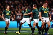 The Best Players in the Springboks