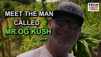 Meet the Man Called Mr. OG KUSH!