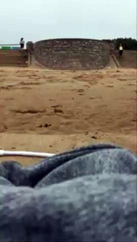 Gaviota le roba el móvil mientras hacía footing