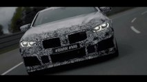 The new BMW M8 Coupe and the new BMW M8 GTE