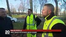 Amiens : quand les feuilles mortes éclairent la ville