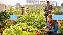 FUN-MOOC : Acteurs, leviers, outils pour mener les transitions du système alimentaire