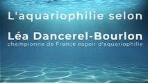 L'aquariophilie selon Léa Dancerel-Bourlon