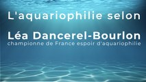L'aquariophilie selon Léa Dancerel-Bourlon