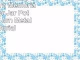eSplanade Teardrop Cremation Urn Memorial Container Jar Pot  Cremation urn  Metal urn