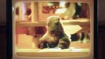 Milka - La marmotte revient