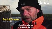 Aux Pays-Bas, un archipel d'îles artificielles construit pour restaurer la biodiversité