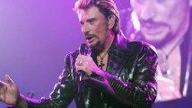 """Roussel : """"Un trust dans un paradis fiscal va capter les bénéfices du prochain disque de Johnny Hallyday… inadmissible !"""""""