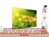 FLORAL PICTURES YELLOW OXALIS FLOWERS CANVAS WALL ART FRAMED PRINTS MODERN FLORAL ART
