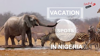 Top 10 Cool Family Vacation Spots In Nigeria