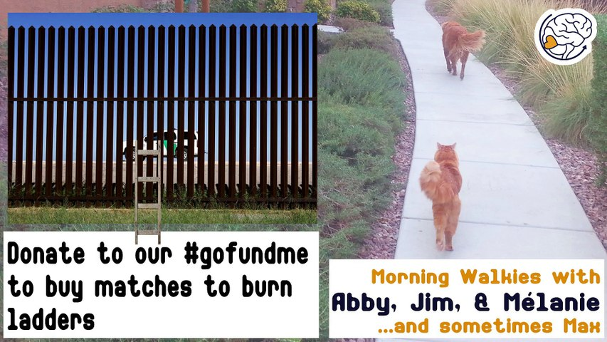 Donate to our #gofundme to buy matches to burn ladders -Walkies with Abby
