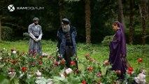 Capitulo 293 Suleiman El Gran Sultan