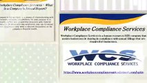 Annual Report Filing Services By Workplace Compliance Services