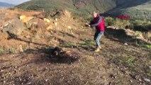 Bursa İznik'te Bir Köpek Otomobil Lastiği ile Birlikte Yakılmış Halde Bulundu