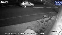 La vidéo poignante d'un homme qui abandonne son chien en pleine rue