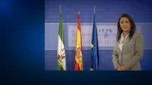 L'extrême droite, arbitre du parlement andalou