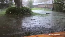 Torrential rains cause flooding